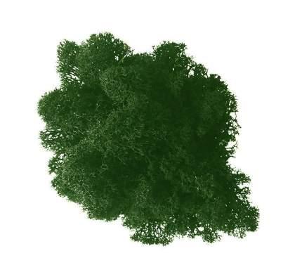 Стабилизированный мох Наш Кедр 6382 зеленая ель 0,7 кг