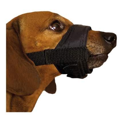 Намордник для собак  Дарэлл нейлон, регулируемый №6 25-35см черный