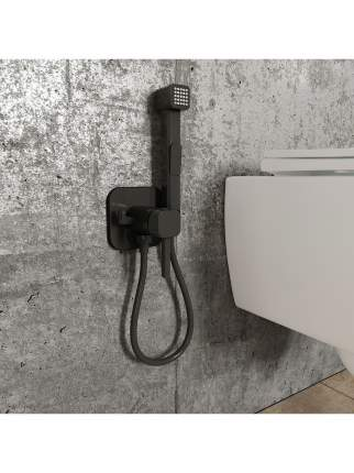Встраиваемый смеситель с гигиеническим душем IDDIS 004BLS0i08