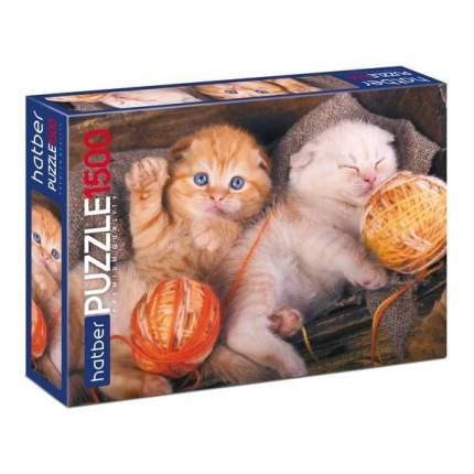 Пазлы Hatber Premium Котиков много не бывает, 1500 элементов