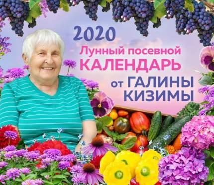 Настенный лунный посевной календарь 2020 от Галины Кизимы