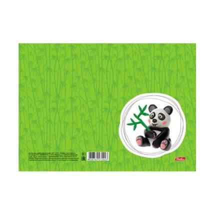 Доска для лепки пластиковая Hatber Панда, А5