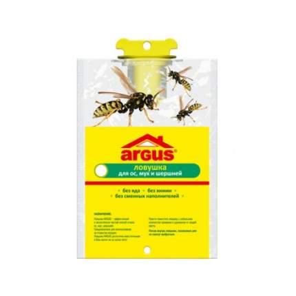 Ловушка для ос, шершней, мух Argus 2000