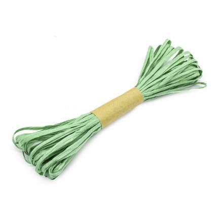 Рафия бумажная Астра креатив зеленый,10м/уп 7715311_00008