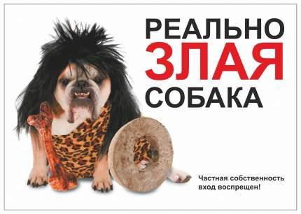 """Табличка ДАРЭЛЛ """"Реально злая собака"""" формат А5"""