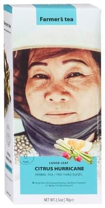 Чай травяной Sense Asia Цитрусовый Ураган 70 г Вьетнам