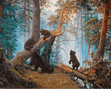 Картина по номерам Freya Утро в сосновом лесу GTG-PNB/R1 №09 40 х 50 см