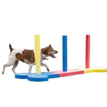 Слалом для аджилити Rosewood для собак малых и средних пород, полиэстр, 160х50 см