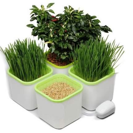 Ручной проращиватель для растений Здоровья Клад ПРХ4