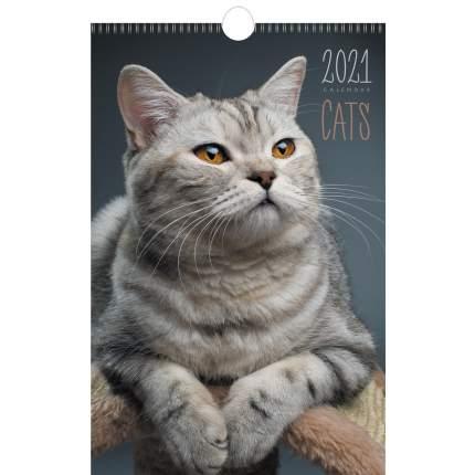 Календарь настенный на 2021 год Listoff Домашние любимцы (евроспираль с ригелем)