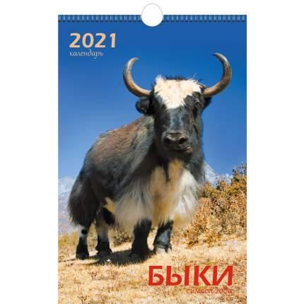 Календарь настенный на 2021 год Listoff Символ года (евроспираль с ригелем)