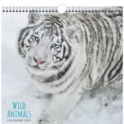 Календарь настенный на 2021 год Listoff Дикие животные (евроспираль с ригелем)