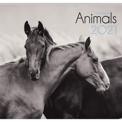 Календарь настенный на 2021 год Listoff Дикие животные, 12 листов (скрепка)