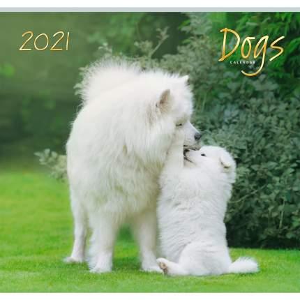 Календарь настенный на 2021 год Listoff Домашние любимцы, 12 листов (скрепка)