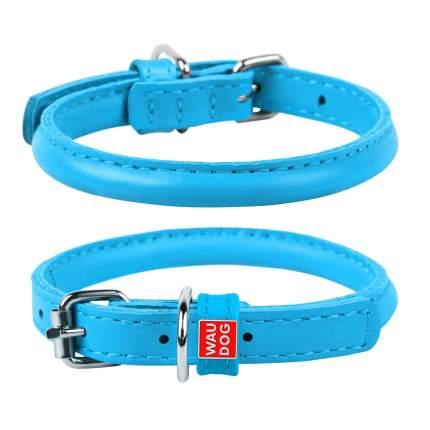Ошейник для собак Collar WAUDOG Glamour круглый, голубой, 8мм х 25-33см