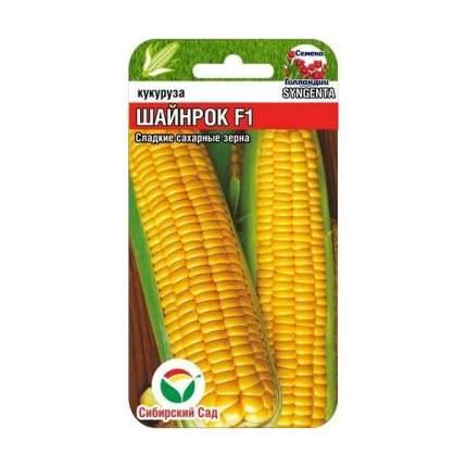 Кукуруза сахарная Шайнрок F1, 5 шт. Семена Голландии
