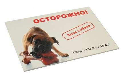 """Табличка Дарэлл """"Осторожно! Злая собака"""",  формат А5, 21,6 х 15,4 см"""