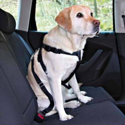 Ремень безопасности для собак TRIXIE автомобильный, со шлейкой 30-60см ,в ассортименте