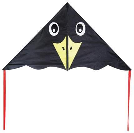 Воздушный змей X-Match Черный ворон