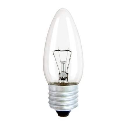 Лампа накаливания КОСМОС 61454