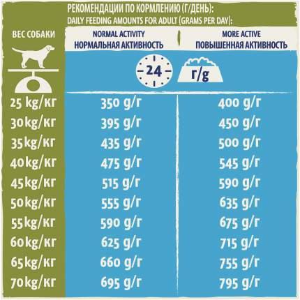 Сухой корм для собак Dog Chow Adult Large Breed, для крупных пород, индейка, 14кг
