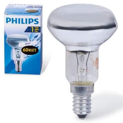 Лампа накаливания PHILIPS Spot NR50 60W E14 30°