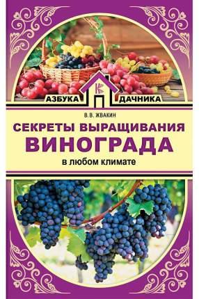 Секреты выращивания винограда в любом климате