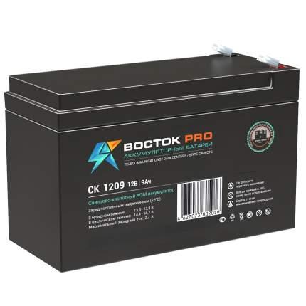 Аккумулятор для ИБП Восток СК 1209