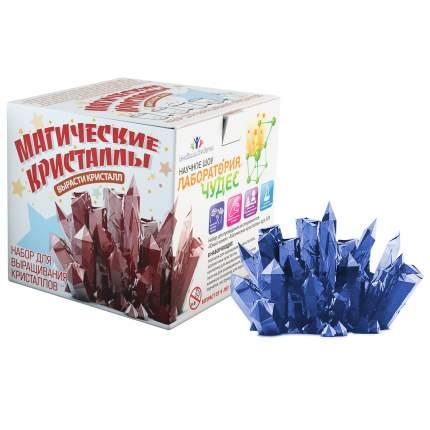 Магические кристаллы Висма большой набор для выращивания, сапфировый