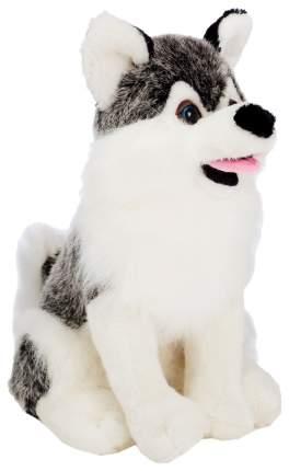 Мягкая игрушка «Собака №3» сидит, 30 см Sima-Land