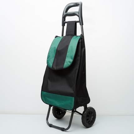 Тележка багажная ручная 25 кг (сумка), 50 кг (каркас) DT-20 зеленая с черным