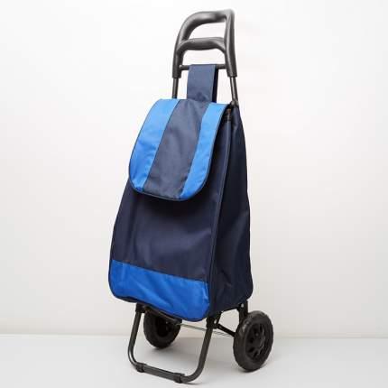 Тележка багажная ручная 25 кг (сумка), 50 кг (каркас) DT-20 синяя