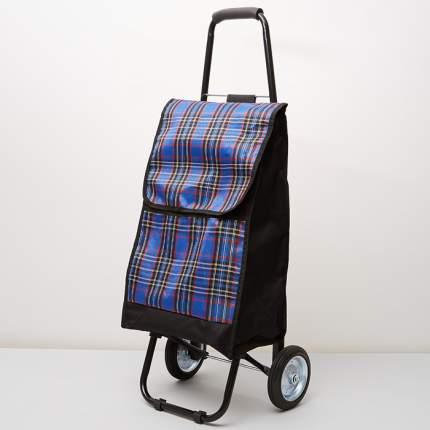 Тележка багажная ручная 50 кг DT-23 черная с синим