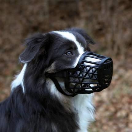 Намордник для собак  TRIXIE размер M 20см, пластик, черный