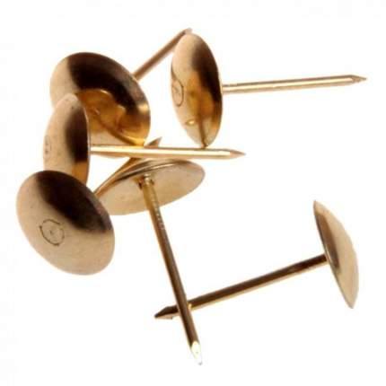 Гвозди мебельные 10х15 мм, 50 шт. (Медь)