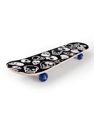 Скейтборд SXRIDE JST71 Skull PVC, 71х20х8,5 см JST71PVC01