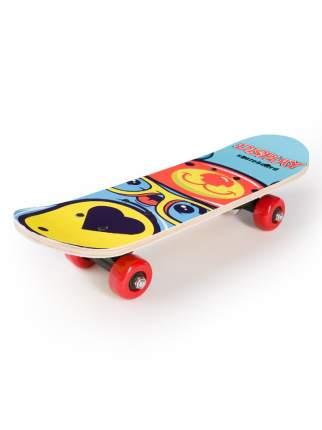 Скейтборд SXRIDE JST43 Display Bear PVC, 43х13х8,5 см JST43PVC04