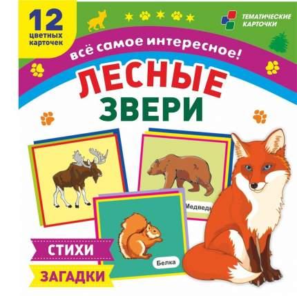 Лесные звери: 12 развивающих карточек с красочными картинками, стихами и загадками для ...