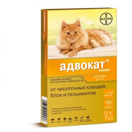 Капли для кошек против глистов, блох, клещей Bayer , 1 пипетка, до 4кг