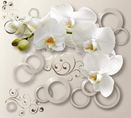 Фотообои Московская Обойная Фабрика Белая орхидея 6157-ML