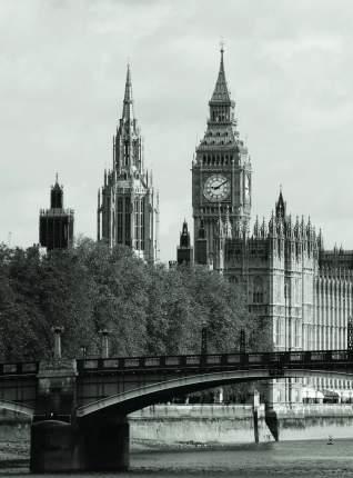 Фотообои Московская Обойная Фабрика Лондон 2040-М
