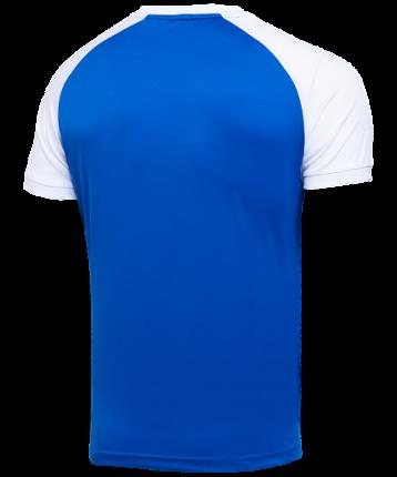 Футболка футбольная Jogel Camp Reglan, blue/white, L
