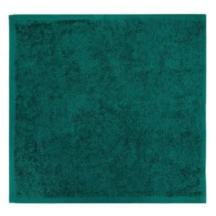 Полотенце (салфетка) махровое кухонное (Темно-Зеленый) 30х30