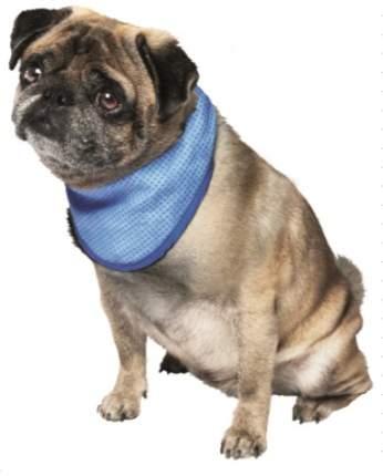Бандана для собак Nobby охлаждающая, унисекс, демисезон, в ассортименте, 30-43 см