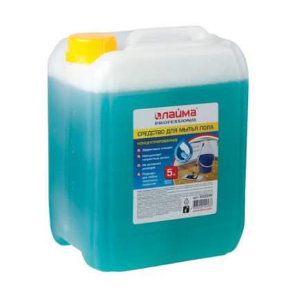Средство для мытья пола лайма, PROFESSIONAL, Морской бриз, 5 л