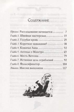 Агата Мистери. Кн.27. Загадочное происшествие на Венском балу