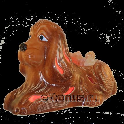 Солевая лампа «Собака рыжая»