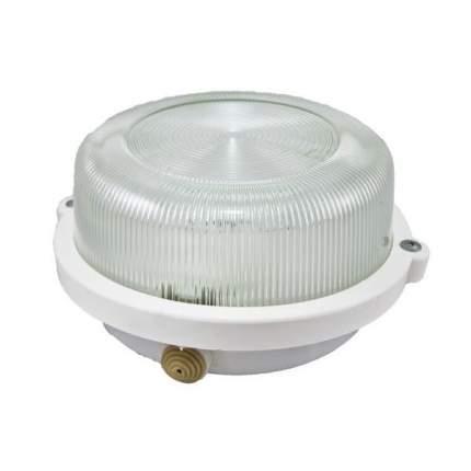 Светильник Tdm Нпп 03-100-005.03 У3 (Корпус С Обручем Без Защитной Решетки, Белый)