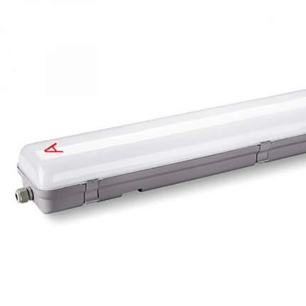 Светильник светодиодный WOLTA PRO ПРОМ с БАП ДСП01-36-041-6К