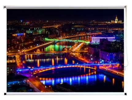 Экран для видеопроектора ПРО-ЭКРАН 160х120 см